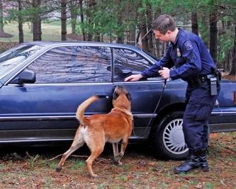 پیدا کردن مواد منفجره توسط سگ