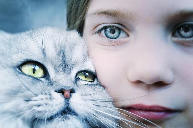 خرید گربه برای بچه ها