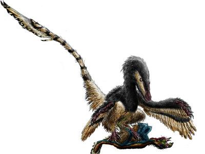 ده پرنده خطرناک پرنده ماقبل تاریخ Velociraptor