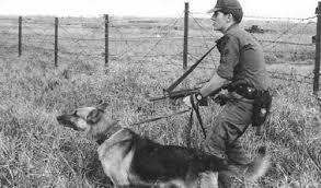 کایزر سگ جنگ ارتش نظامی